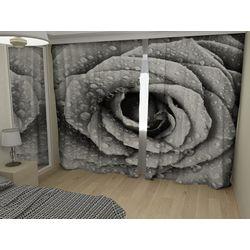 ФотоШторы Пепельная роза