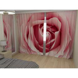 ФотоШторы Розовая роза