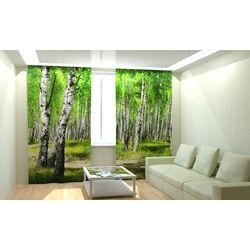 ФотоШторы Березовый лес