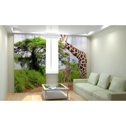 Комплект фото шторы+фото тюль Жираф
