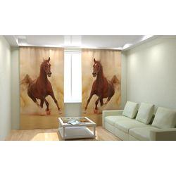 ФотоШторы Лошадь