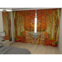 Комплект фото шторы+фото тюль Осенний день