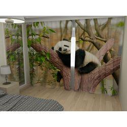 Комплект фото шторы+фото тюль Панда на дереве