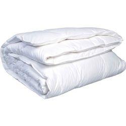Одеяло Лебяжий пух Тик