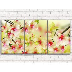Модульная картина Воздушная орхидея 120х60 см