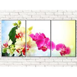 Модульная картина Веточка орхидеи 120х60 см