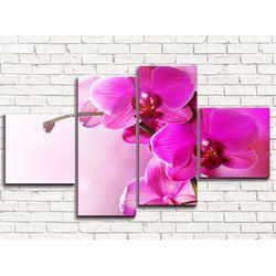 Модульная картина Розовая орхидея 2  110х60 см