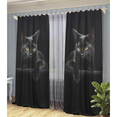 ФотоШторы Черная кошка